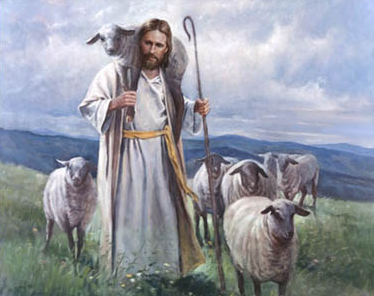 sheepjesus